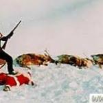 succesfuld-julemandsjaeger-er-du-julehader