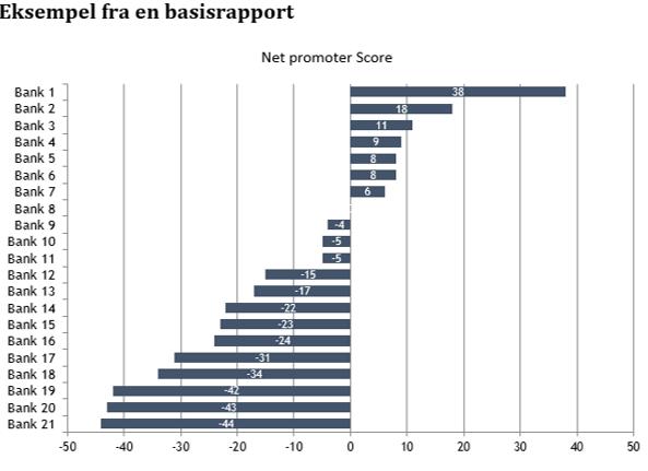 eksempel_basisrapport